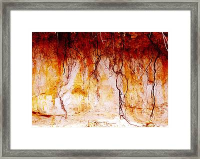 Searching Framed Print by Holly Kempe