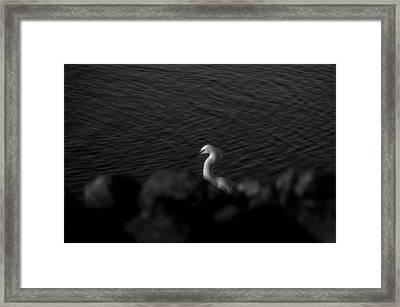 Seascape Gulf Coast, Ms F60t Framed Print by Otri Park