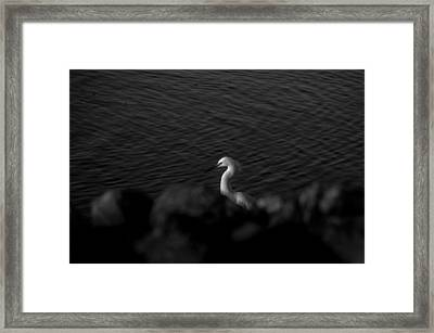 Seascape Gulf Coast, Ms F60u Framed Print by Otri Park