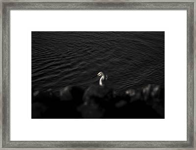 Seascape Gulf Coast, Ms F60v Framed Print by Otri Park