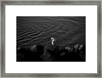 Seascape Gulf Coast, Ms F60w Framed Print by Otri Park