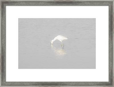 Seascape Gulf Coast, Ms F60x Framed Print by Otri Park