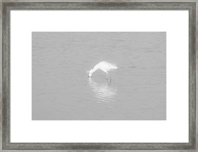 Seascape Gulf Coast, Ms F70a Framed Print by Otri Park