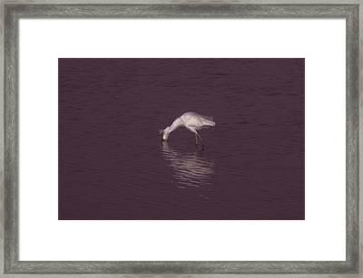 Seascape Gulf Coast, Ms F70b Framed Print by Otri Park