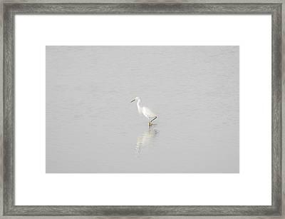 Seascape Gulf Coast, Ms F70d Framed Print by Otri Park