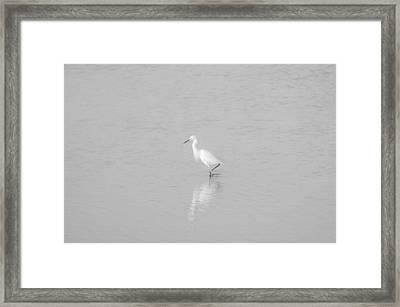 Seascape Gulf Coast, Ms F70e Framed Print by Otri Park