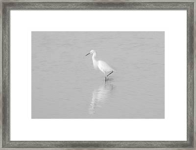 Seascape Gulf Coast, Ms F70f Framed Print by Otri Park