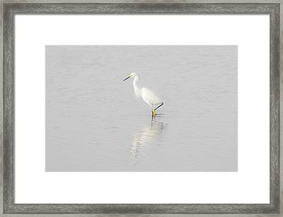 Seascape Gulf Coast, Ms F70g Framed Print by Otri Park