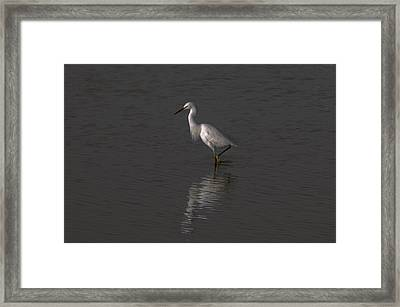 Seascape Gulf Coast, Ms F70h Framed Print by Otri Park