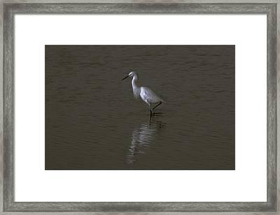 Seascape Gulf Coast, Ms F70i Framed Print by Otri Park