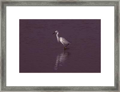 Seascape Gulf Coast, Ms F70j Framed Print by Otri Park
