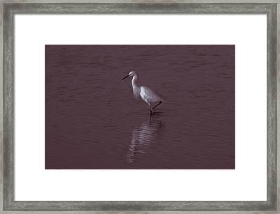 Seascape Gulf Coast, Ms F70k Framed Print by Otri Park