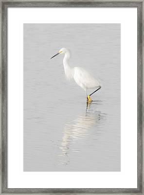 Seascape Gulf Coast, Ms F70l Framed Print by Otri Park