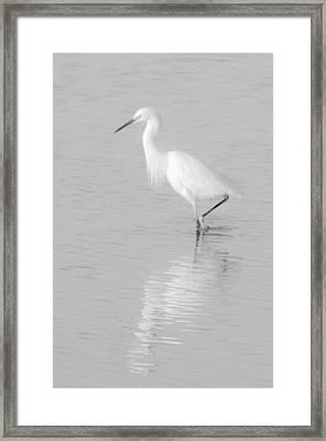 Seascape Gulf Coast, Ms F70m Framed Print by Otri Park