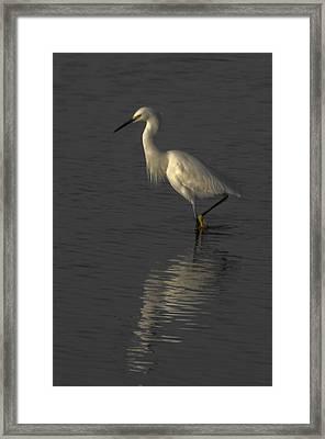 Seascape Gulf Coast, Ms F70n Framed Print by Otri Park