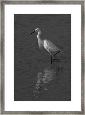 Seascape Gulf Coast, Ms F70o Framed Print by Otri Park