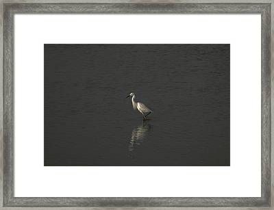 Seascape Gulf Coast, Ms F70p Framed Print by Otri Park