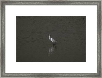 Seascape Gulf Coast, Ms F70q Framed Print by Otri Park