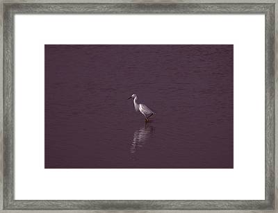 Seascape Gulf Coast, Ms F70r Framed Print by Otri Park