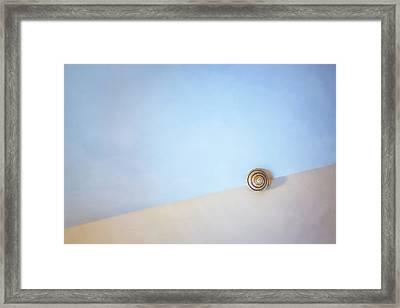 Seashell By The Seashore Framed Print by Scott Norris
