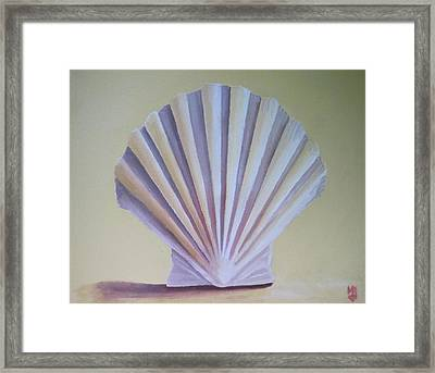 Seashell II Framed Print by Michael Holmes