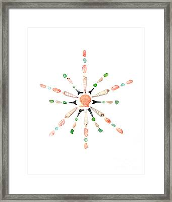 Seashell Snowflake 1 Framed Print by Jennifer Booher