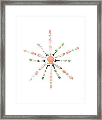 Seashell Snowflake 1 Framed Print by Jennifer Booher