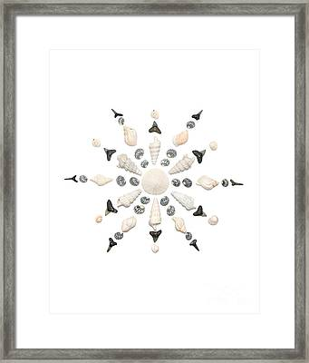 Seashell Snowflake 3 Framed Print by Jennifer Booher