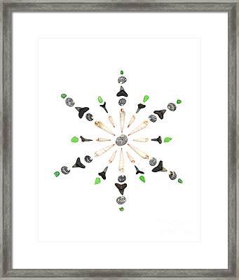 Seashell Snowflake 6 Framed Print by Jennifer Booher