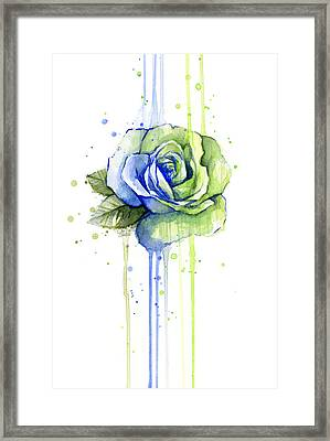 Seattle 12th Man Seahawks Watercolor Rose Framed Print by Olga Shvartsur