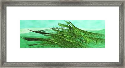 Seaweed Moves Framed Print by Wally Boggus