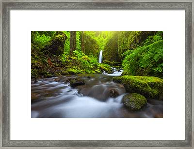 Seclusion Framed Print by Darren  White