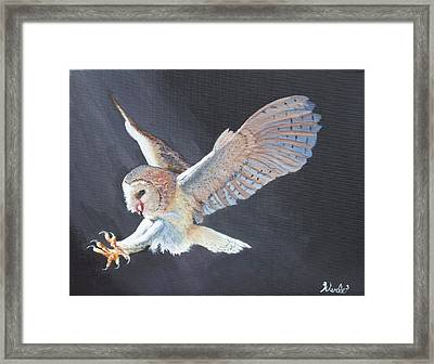 Second Look Framed Print by Bill Werle