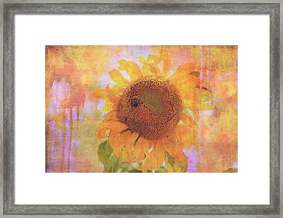 Secret Life Of Bee Framed Print by Toni Hopper
