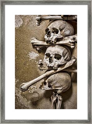 Sedlec Crania And Humeri Framed Print by Heather Applegate