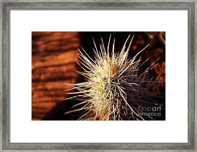 Sedona Framed Print by Linda Knorr Shafer