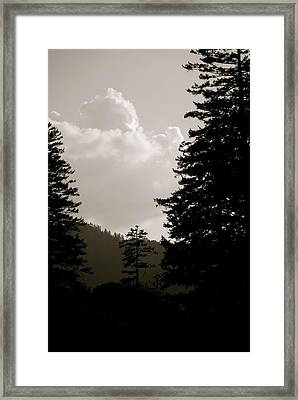 See The Mountain Through The Trees Framed Print by Kimberly Camacho