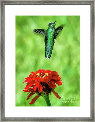 See Ya Later Framed Print by Sue Melvin
