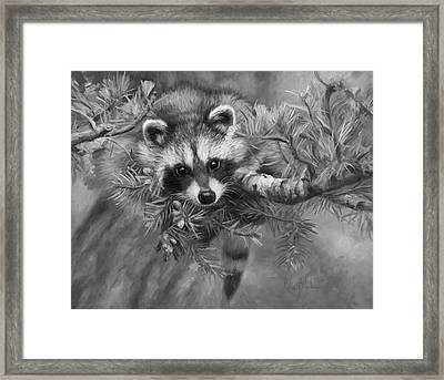 Seeking Mischief - Black And White Framed Print by Lucie Bilodeau