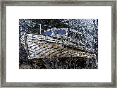 Seen Better Days Framed Print by Marty Saccone