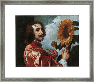 Self-portrait With A Sunflower Framed Print by Anthony Van Dyck