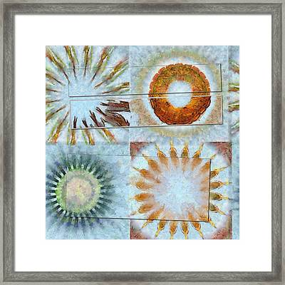 Semicynically Naked Flowers  Id 16165-045425-04611 Framed Print by S Lurk