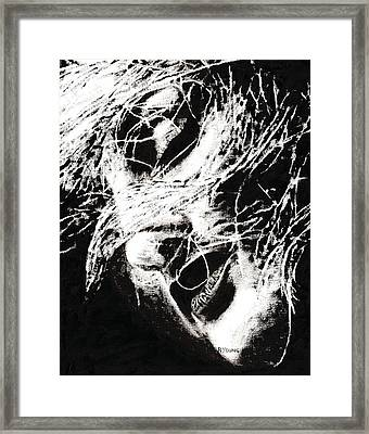 Sensations Framed Print by Richard Young
