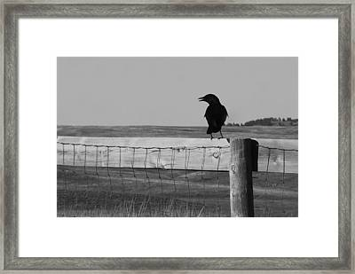 Sentinel Framed Print by Harold Clayberg