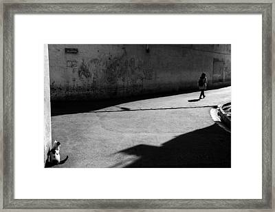Separation Framed Print by Iman Samady