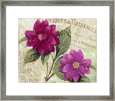September Dahlias Framed Print by Mindy Sommers