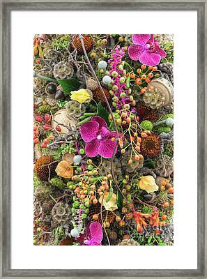 Septembers Collection Framed Print by Tim Gainey