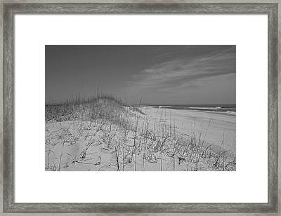 Serene Lookout Framed Print by Betsy Knapp
