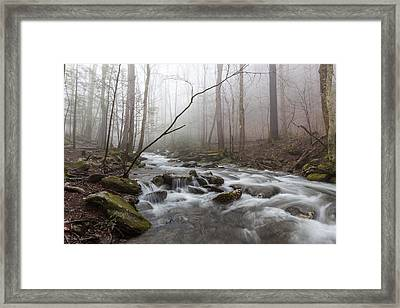 Serene Repose Framed Print by Everet Regal