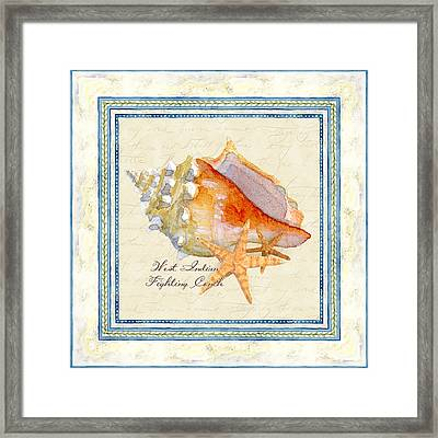 Serene Shores - West Indies Fighting Conch N Starfish Framed Print by Audrey Jeanne Roberts